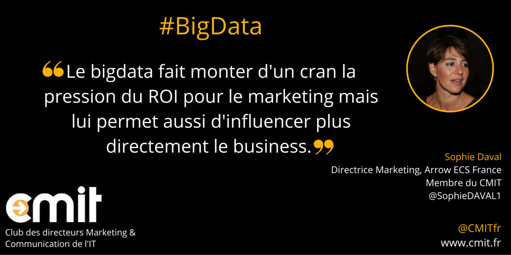 Citation BigData CMIT Sophie Daval